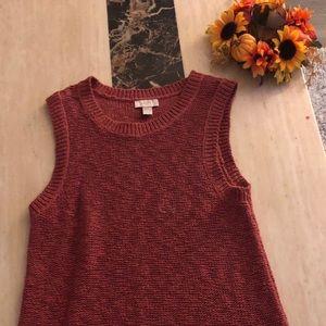 Loft tunic knit sleeveless sweater